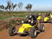 Build Your Own Dune Buggy/Sand Buggy/VW ~ FREE Guide!